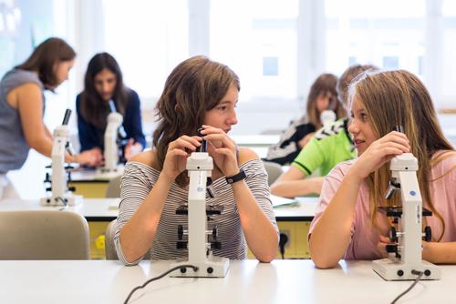 Naturwissenschaften, Christian-Hülsmeyer-Schule, Barnstorf